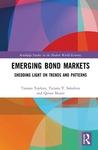 Emerging bond markets: shedding light on trends and patterns
